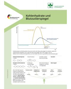 Kohlenhydrate und Blutzuckerspiegel